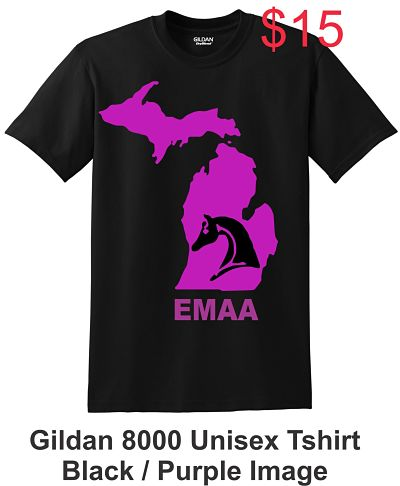 Unisex Short Sleeve Tshirt (Gildan 8000) - EMAA