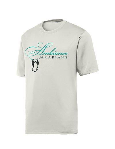 ST320 - Men's Performance Wear T-Shirt - Ambiance Arabians